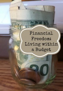 Steps to live within a budget to gain financial freedom.| eattravellife.com