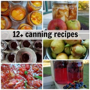 13+ home canning food recipes you need to for your garden