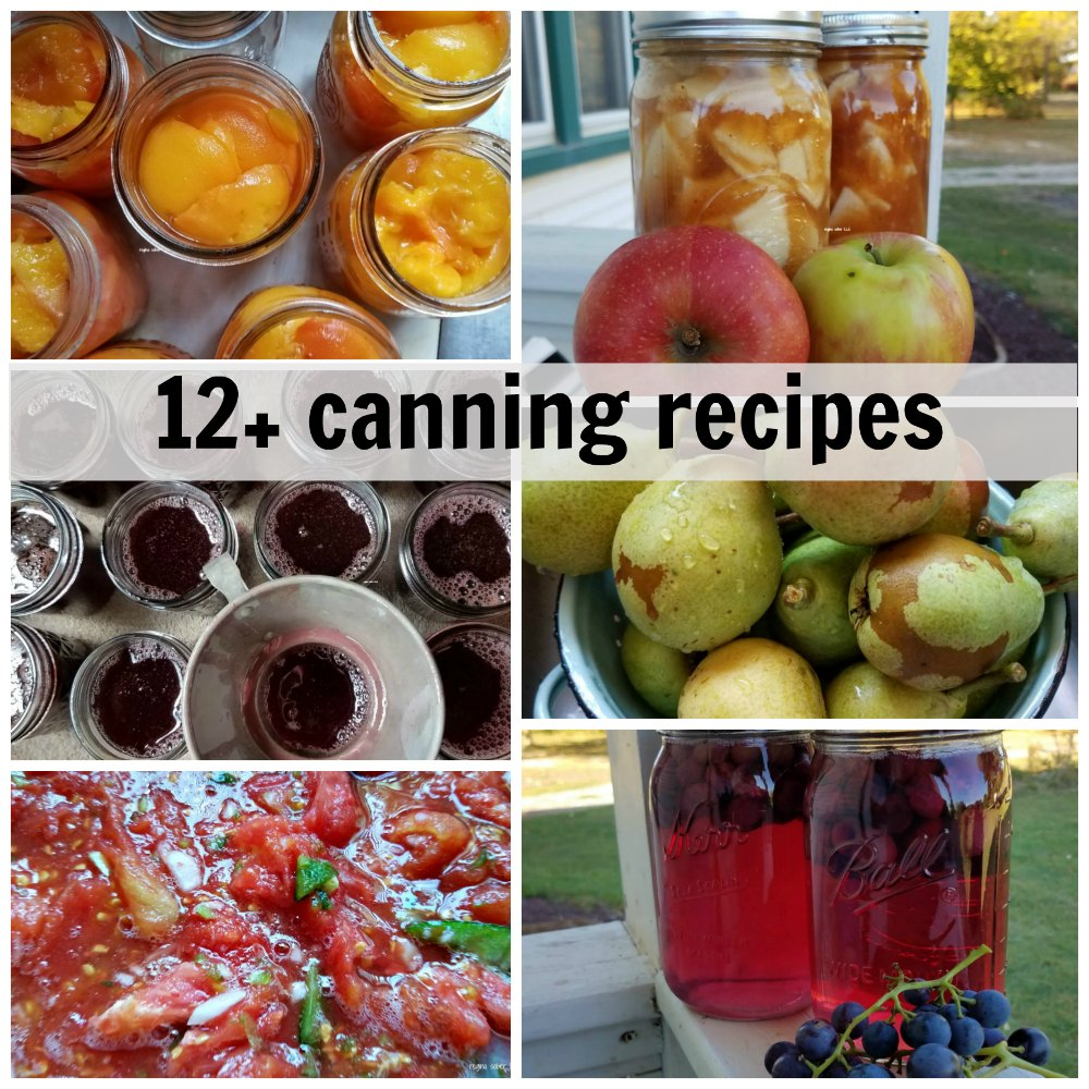 Check out these 12+ canning recipes to take your garden an berries and turn them into your food year round. What is your favorite item to can? eattravellife.com