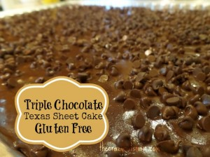 Enjoy Triple Chocolate Texas Sheet cake make with gluten free flour. | eattravellife.com