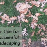 landscape tips