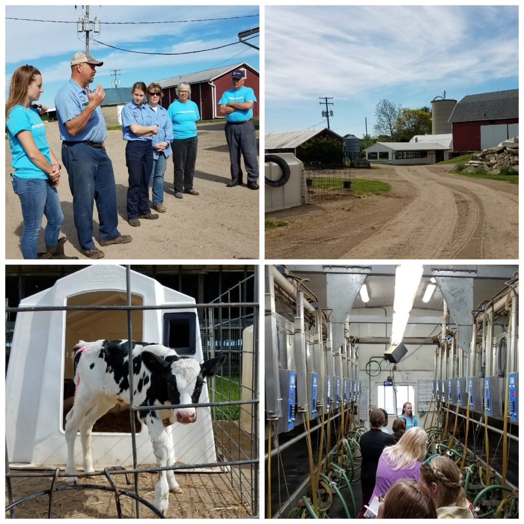 Check out what I learned on the Michigan grown Michigan great farm tour. Thanks to the Michigan Agriculture Council. I was able to visit a dairy farm, lamb meat farm and a greenhouse and learn so much about how farmers in Michigan care for their animals and crops. - eattravellife.com