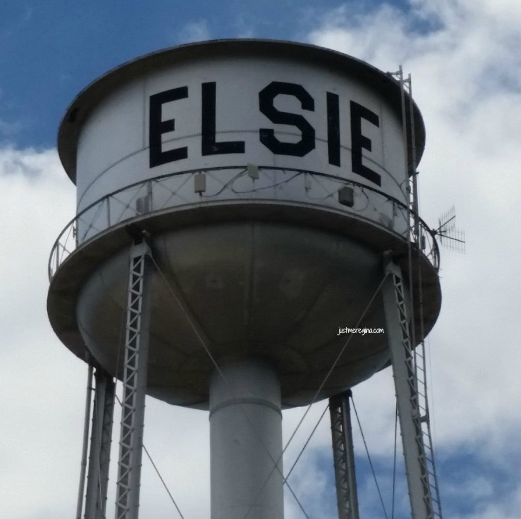 Are you looking for a fun festival to check out in July? Consider coming to Elsie Dairy Days. Located in Elsie Michigan. Your family will have fun in this small town festivities. - eattravellife.com