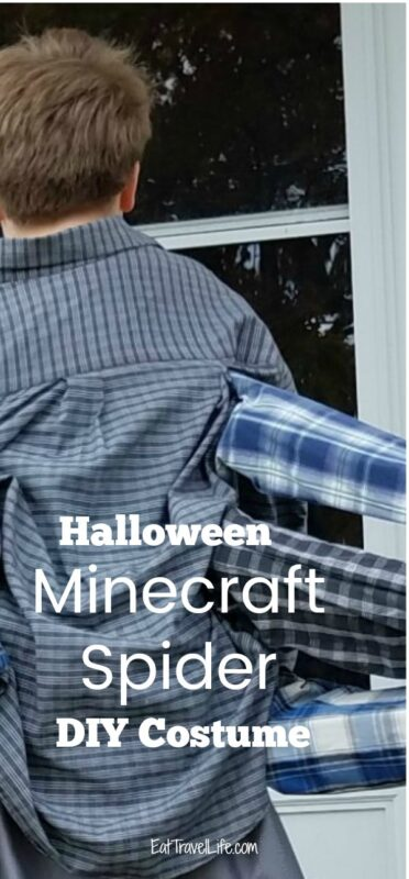 Do your kids love minecraft? See how you can make a homemade Halloween costume of the Minecraft spider. Easy costume idea with a little sewing.