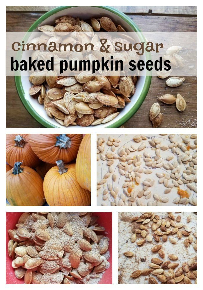 Did you know you can add flavors to your toasted pumpkin seeds? You can! Try this cinnamon sugar pumpkin seed recipe and never eat them plain again. - eattravellife.com