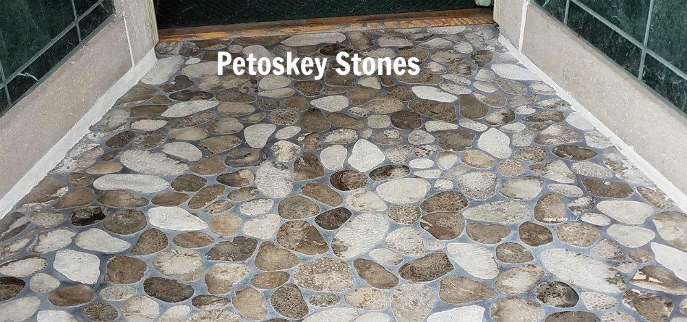 Michigan state stone is the Petoskey Stone