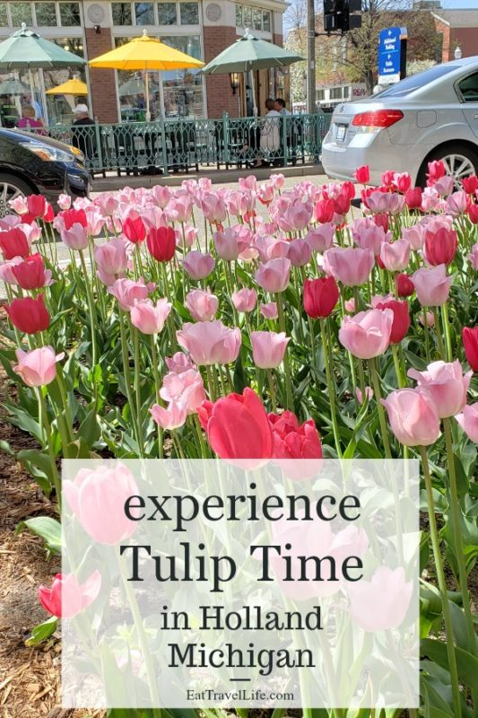 Experience a little bit of the Netherlands when you visit Holland Michigan's Tulip Time Festival in May. Enjoy seeing the tulips and the Dutch culture in Michigan's own Holland community.