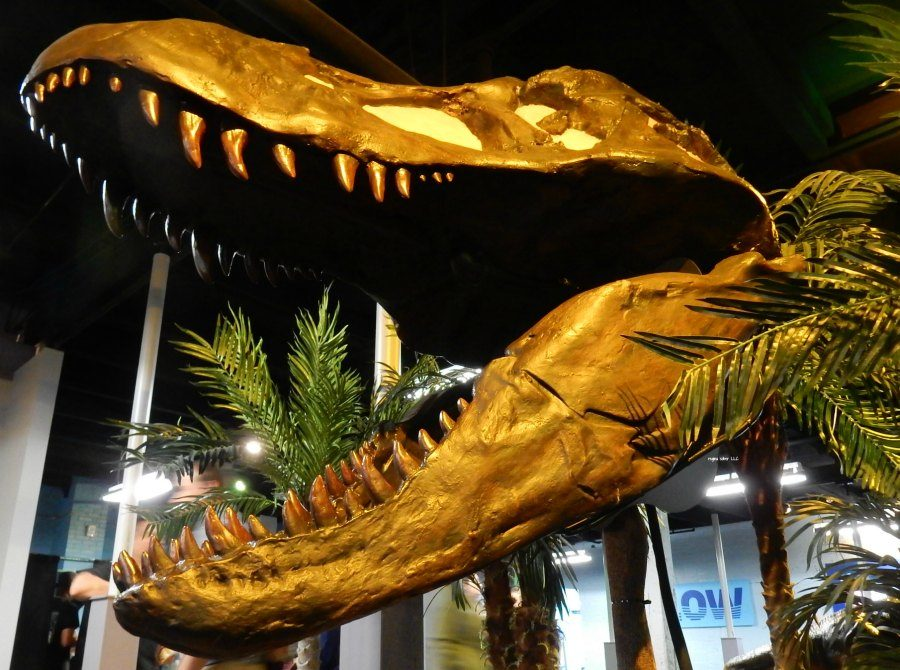 7 things you must do at the Amazing Dinosaur Exhibit – Impression 5 | Lansing Michigan
