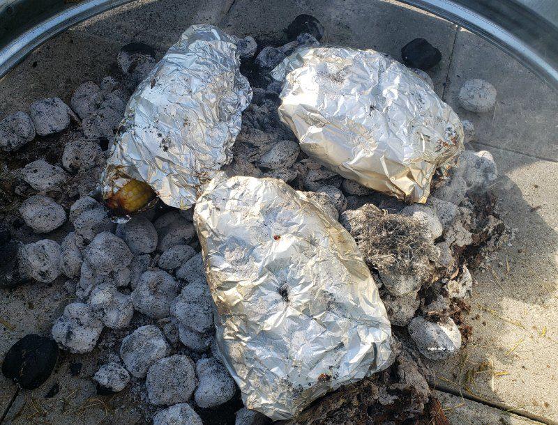 campfire cooking coals