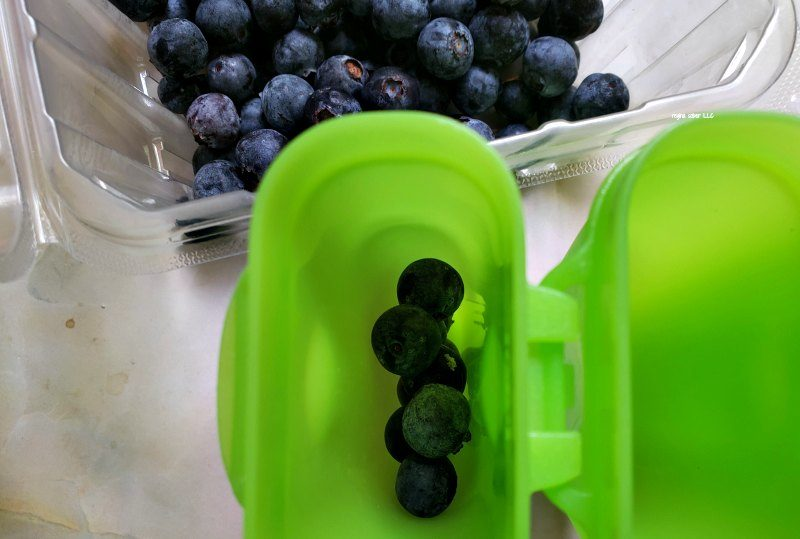 making blueberry popsicles