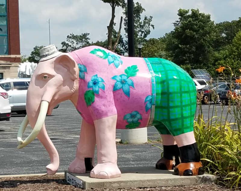 elephant fort wayne