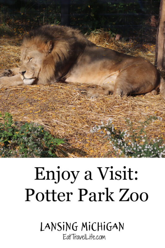Have you visited the Potter Park Zoo in Lansing Michigan? It is a great place to visit in downtown Lansing. Fun for the whole family.